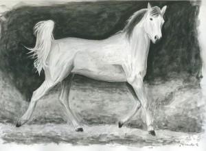 Malek - gemaltes Pferd
